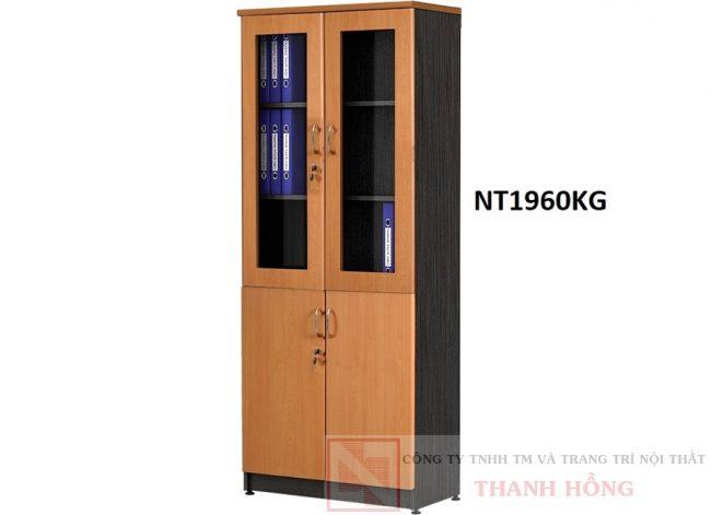 Tủ tài liệu 2 buồng Newtrend NT1960KG